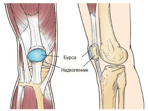 Заболевания суставной сумки коленного сустава thumbnail