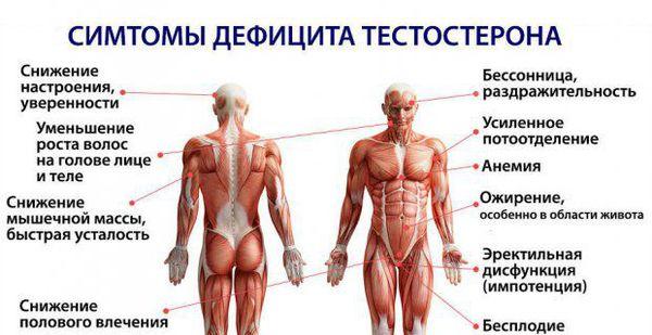 Здоровье климакс мужской климакс thumbnail