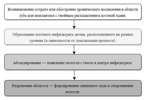 Стадии развития абсцесса