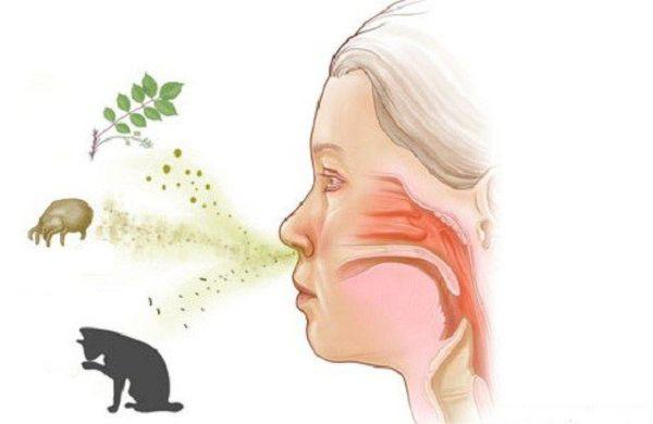 Воздействие причинно-значимого аллергена