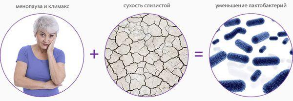 Патогенез атрофического кольпита