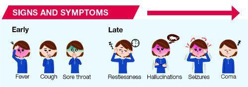 Ранние и поздние симптомы бешенства