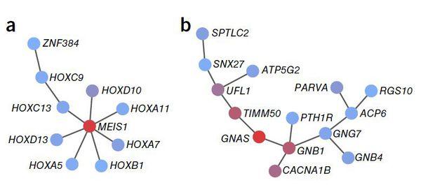 Генетическая архитектура бессонницы
