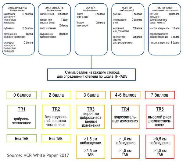 Классификация УЗ-признаков узлов щитовидной железы по системе TIRADS