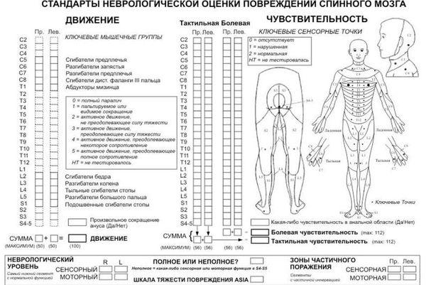Шкала неврологической оценки повреждения спинного мозга