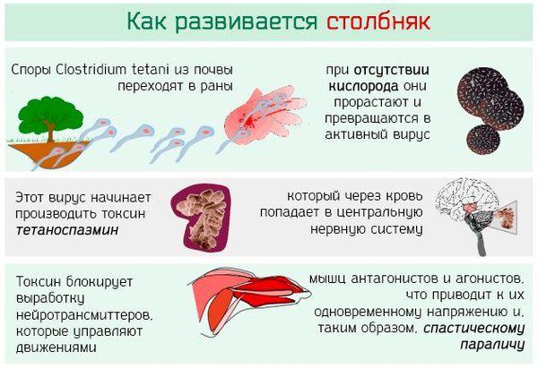 Probolezny Ru Stolbnyak