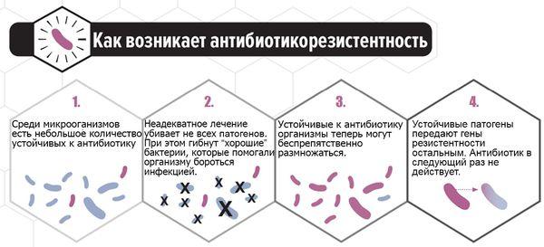 Возникновение антибиотикорезистентности