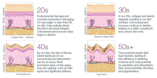 Этапы естественного процесса старения кожи, начиная с 20 лет